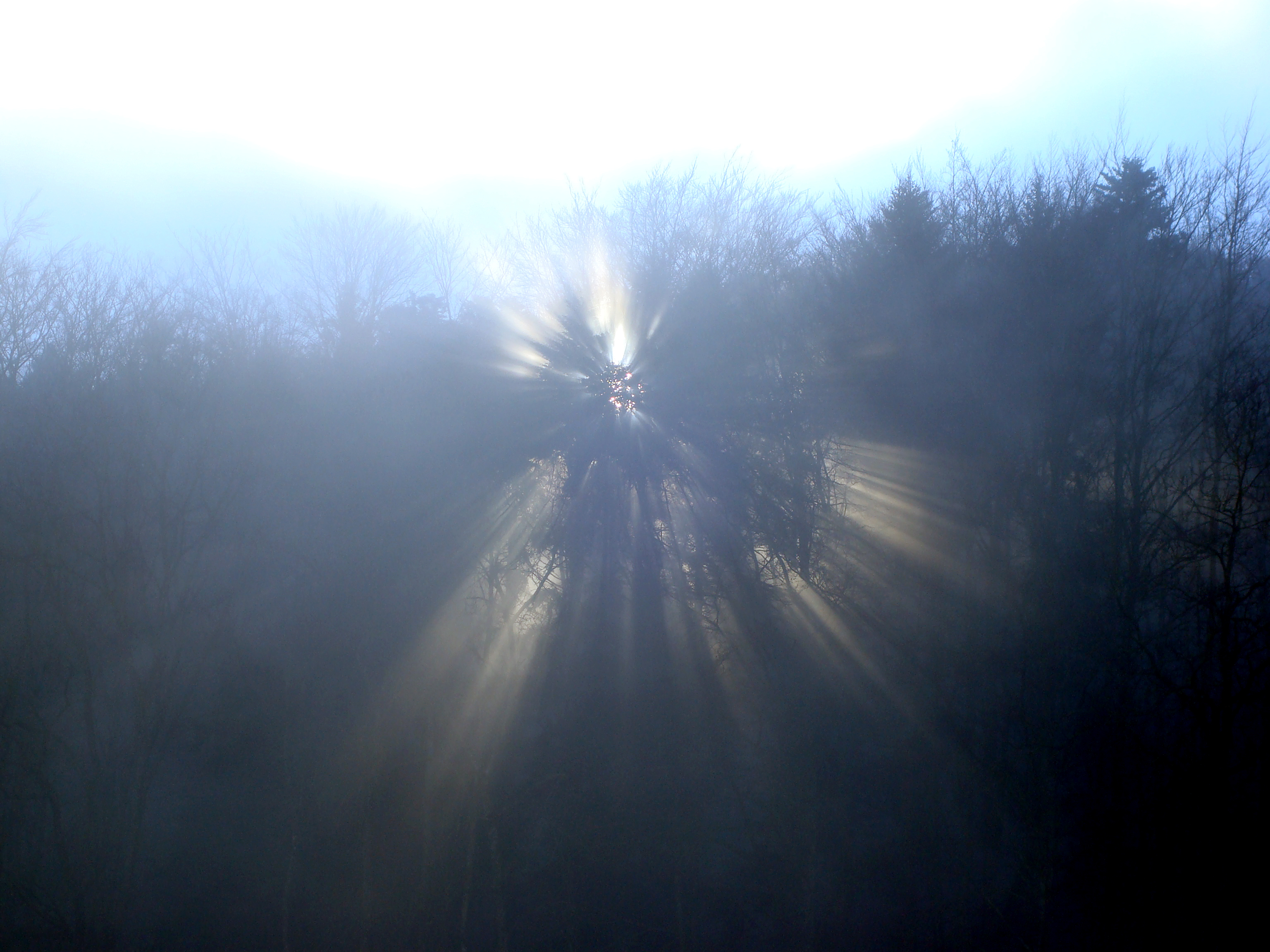 Sonne im Nebel