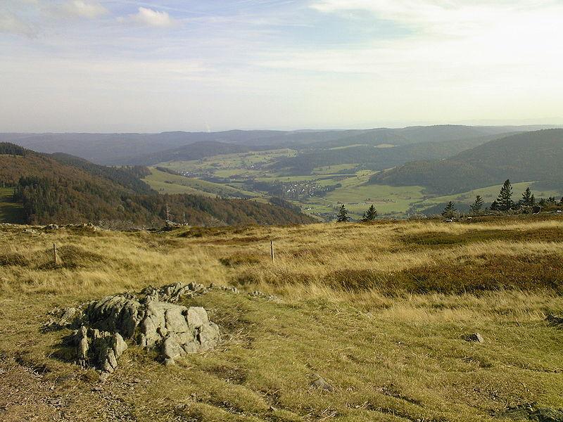 Herzogenhorn, Blick nach Süden mit dem Tal von Bernau