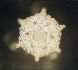 """Emoto Wasserkristall """"Liebe und Dankbarkeit"""""""